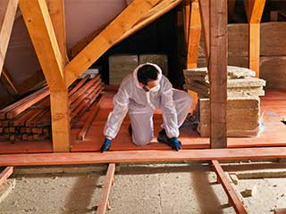 Attic Insulation Services | Attic Cleaning Sunnyvale, CA